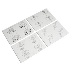 Botany Puzzle: Copy Masters