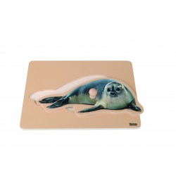 Toddler Puzzle: Seal