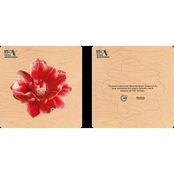 Maria Montessori 150 puzzle