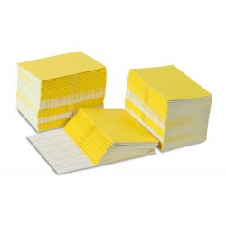 Writing booklets: yellow- small (100)