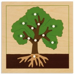 Ботанически пъзел: Дърво