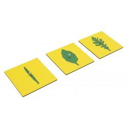 Карти с листни форми / Кутия за съхранение