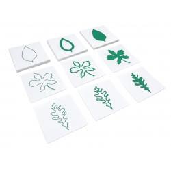 Карти с листни форми