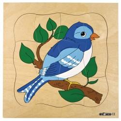 Пъзели, представящи растежа: птиче