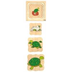Пъзели, представящи растежа: костенурка